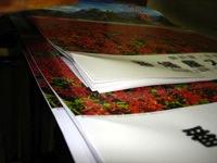 カレンダーの名入れ印刷